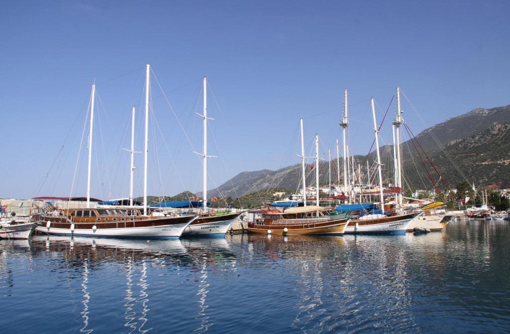 Our Neighbours in Kas Port