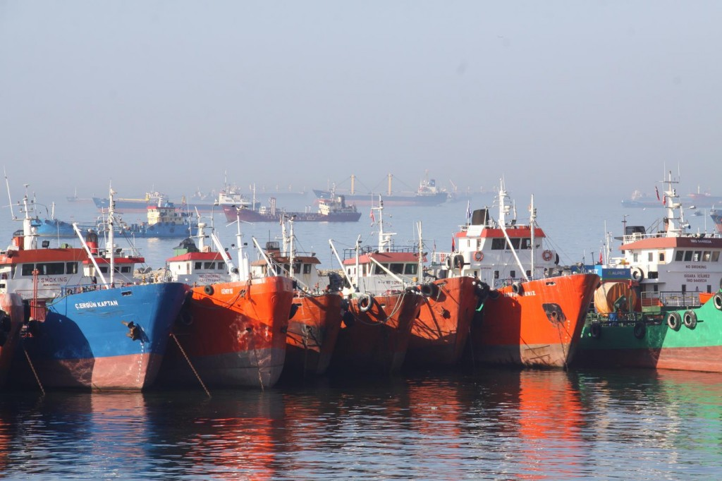 Colourful Boats Line the Shore by the Terminal