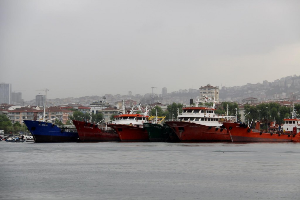 Fishing Boats are Lined up like Soldiers along the Shore at Pendik