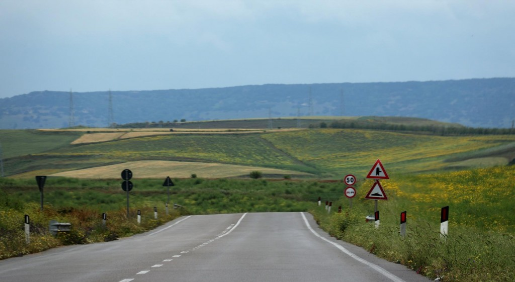 As we drive out of Cagliari and head in a northerly direction we pass very fertile farmland with fields of wildflowers