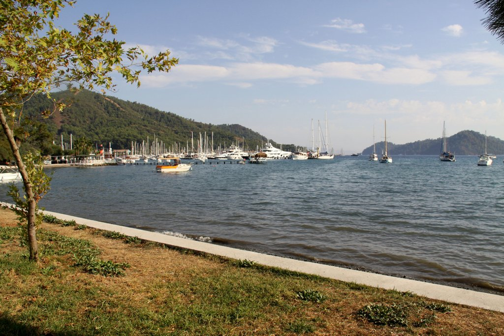 There is no Shortage of Marinas Here