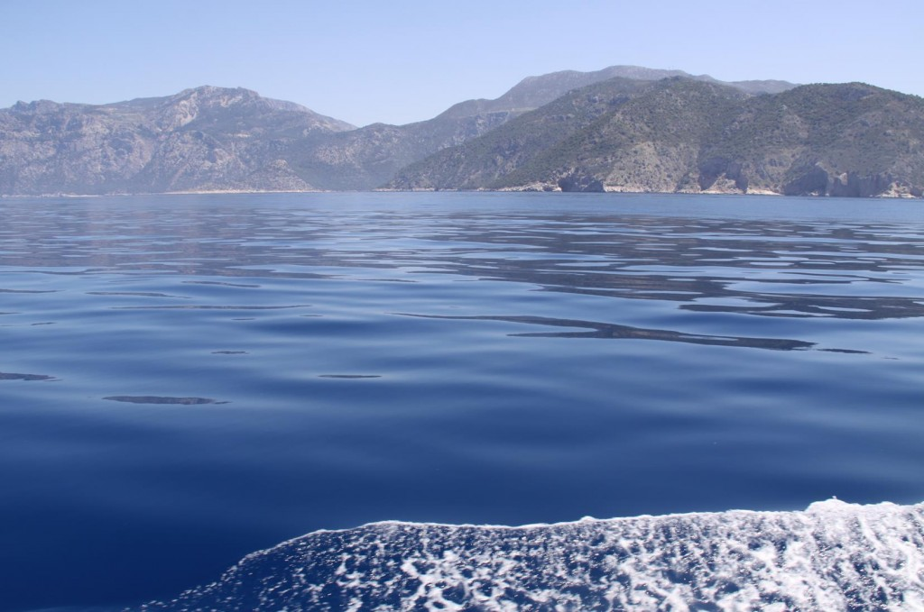 What Wonderful Cruising Conditions we have Today