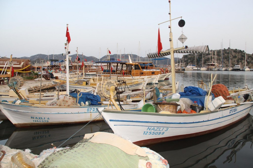 The Local Fishing Boats of Ucaliz Back in Port