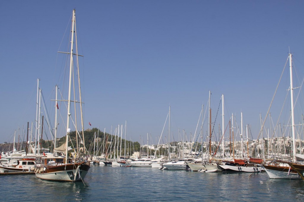 The Marina Seems Quite Full Today