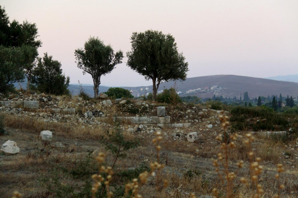 Very Little Remains of the Ancient Site of Teos  However a lot of Excavation is in Progress