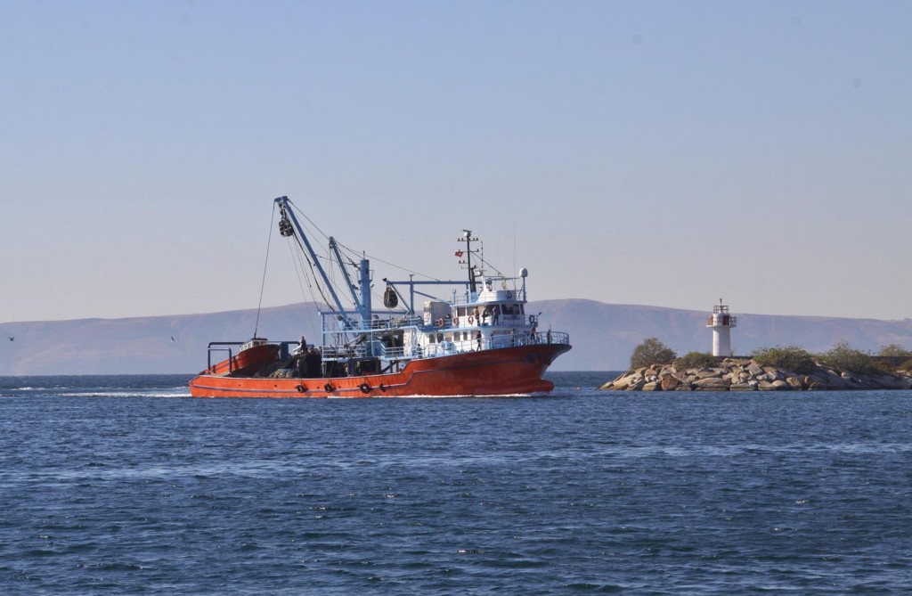 A Well Laden Fishing Boat Returns to the Port
