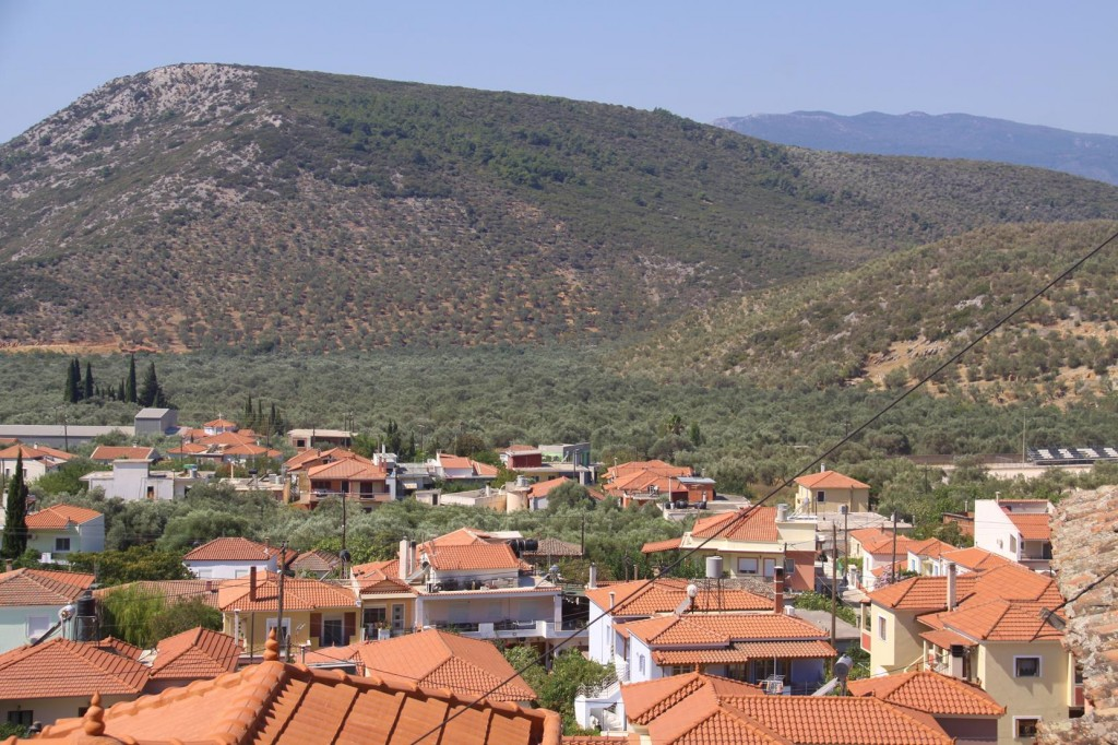 The Surrounding Hills are All Covered with Olive Tree