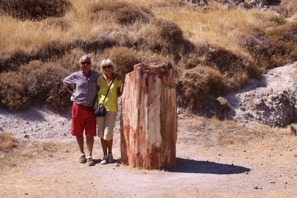 Visiting the Petrified Forest in the Hills Near Sigri was Definitely One of the Main Things on Our Agenda