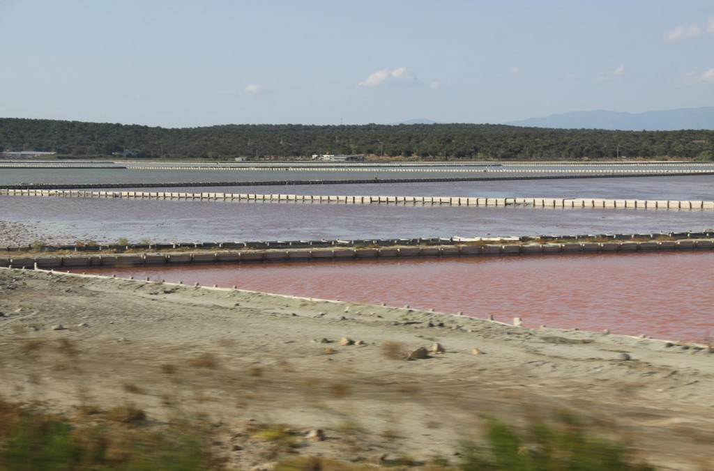 We Pass Colourful Fields from the Production of Salt from Salt Water Evaportation