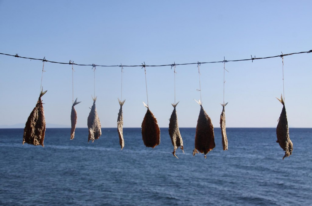 Following Our Arrival in the Restaurant, the Fish Drying in the Sun were Removed Very Quickly !!