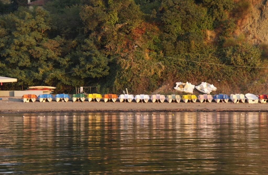 Pedal Boats Lay Idle Along the Shore in the Bay