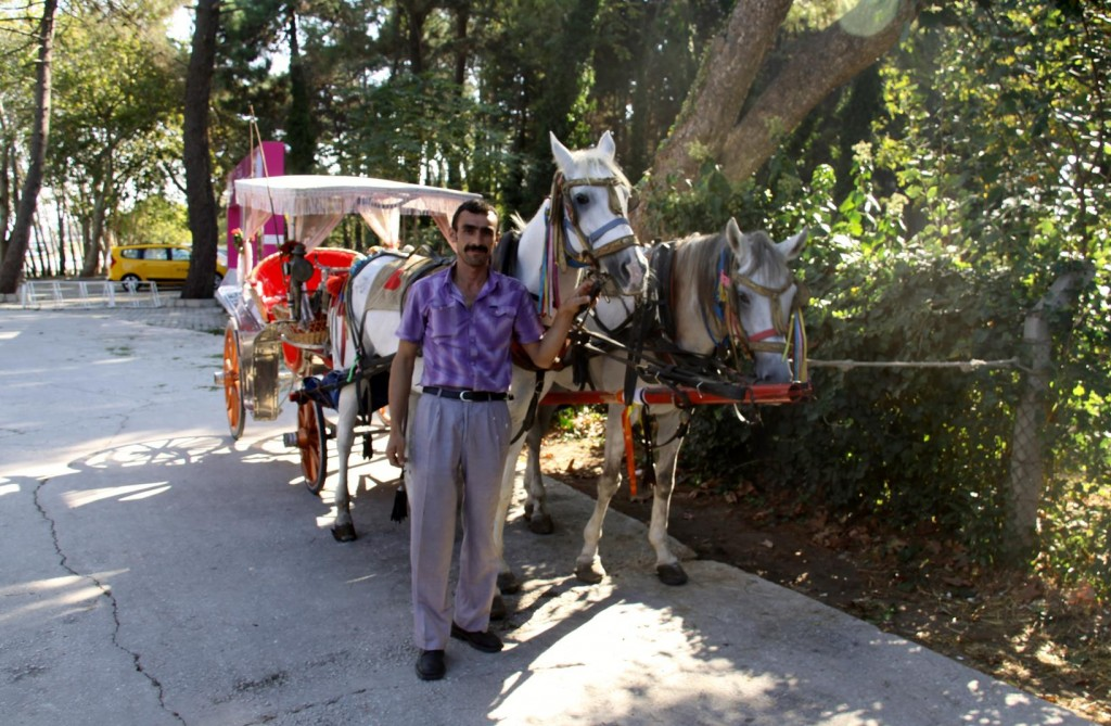 On Our Arrival at Ataturk's  Holiday House by the Sea we were Tempted to take a Buggy Ride