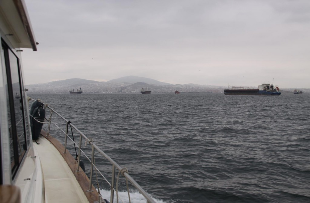 Motoring North Towards Pendik we Pass  an Amarda of Freighters on Anchor in the Marmara Sea