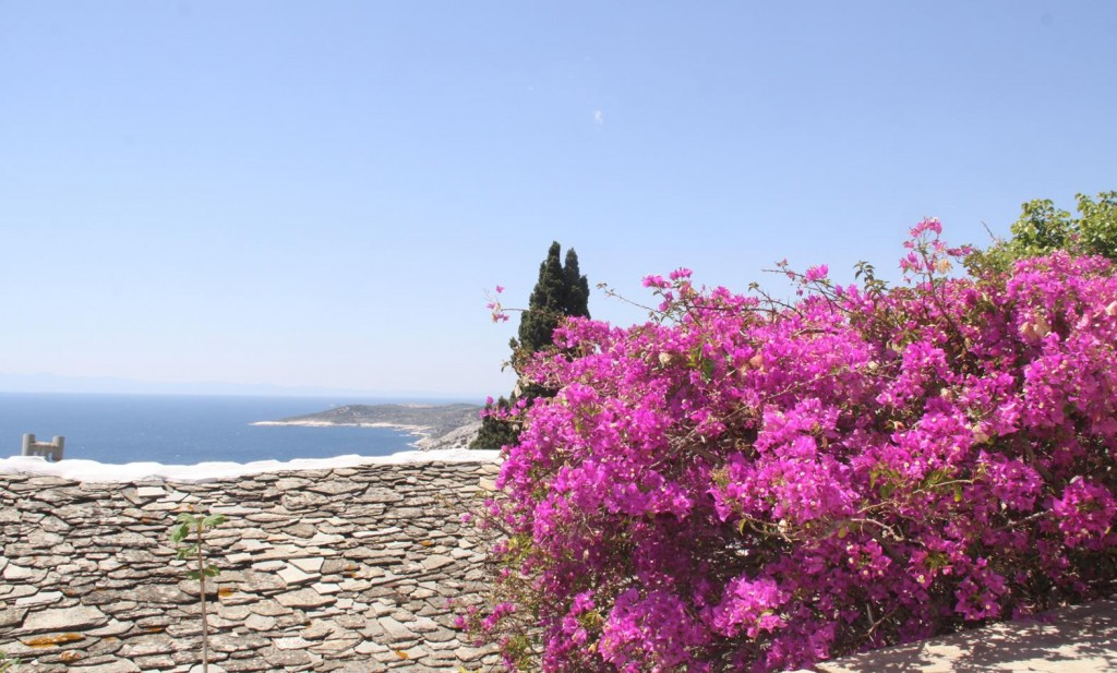 The Bouganvillea was so Colourful all Around the Monastery
