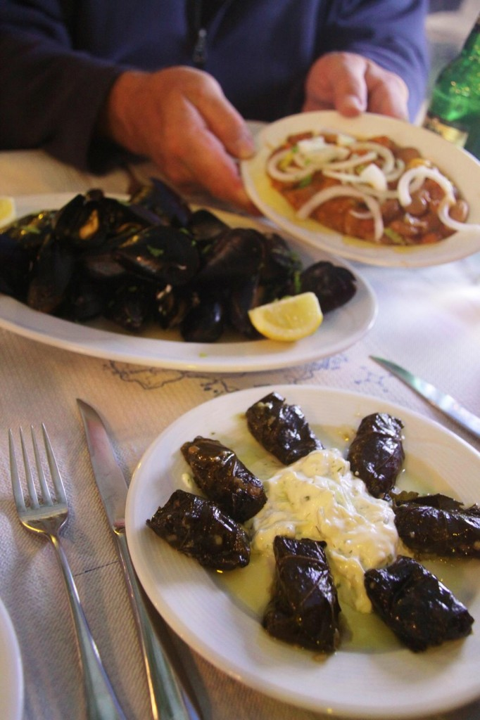 For Starters we Enjoyed Mussels, Beans in a Sauce and Dolmades
