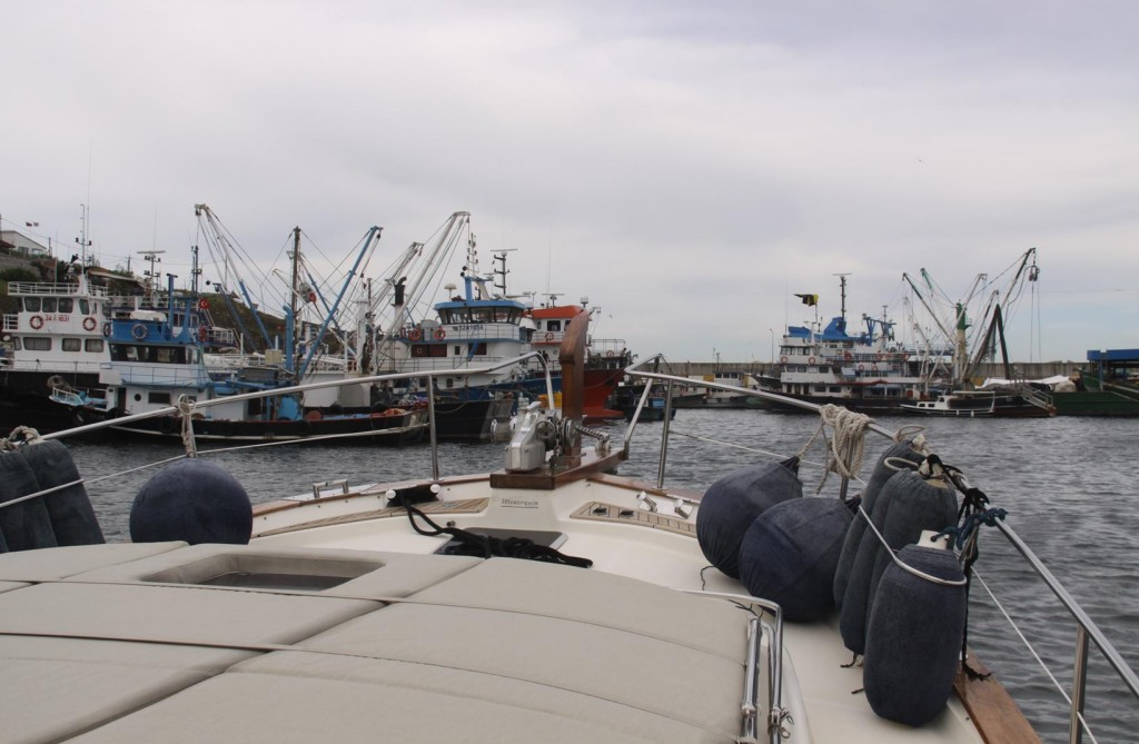 We Return to the Busy Fishing Port at the Entrance to the Black Sea