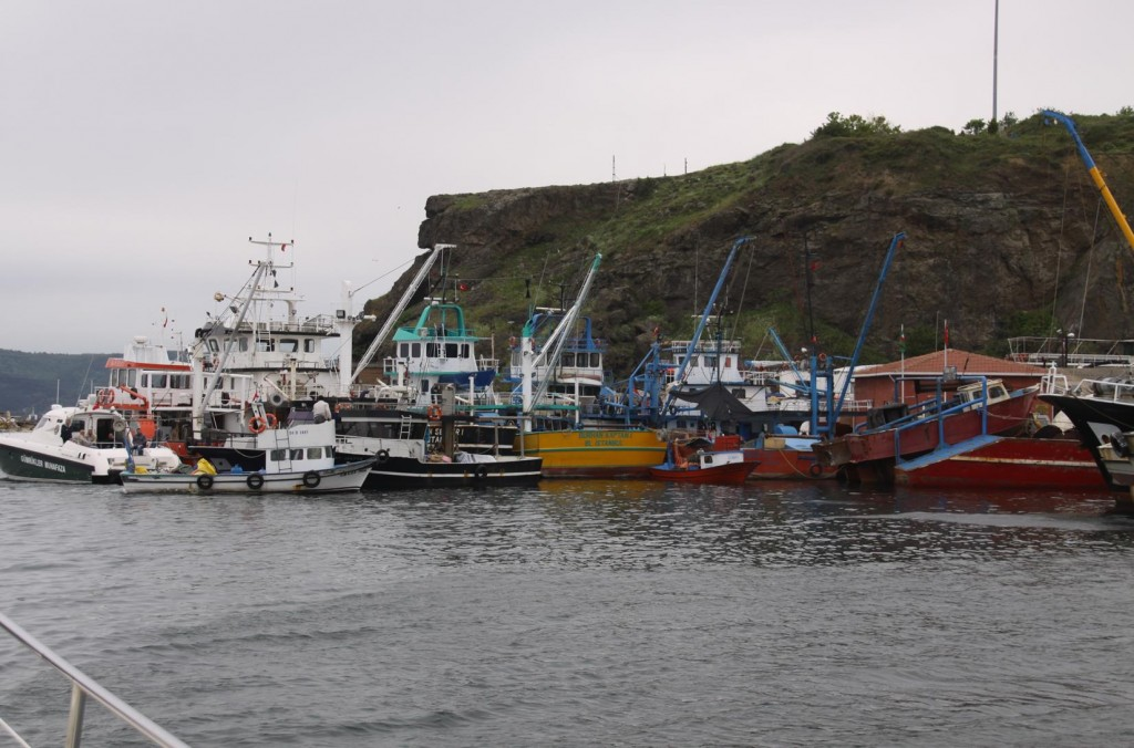 The Huge Fishing Fleet from Turkeli Feneri Supply  much of the Fish out of the Black Sea to the Great Market in Istanbul