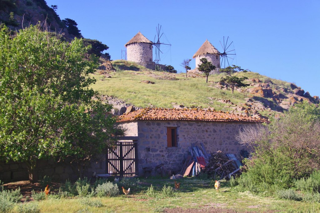 The Countryside of Limnos  is Lush and Green, with Simple Farmhouses and the Occassional Windmills
