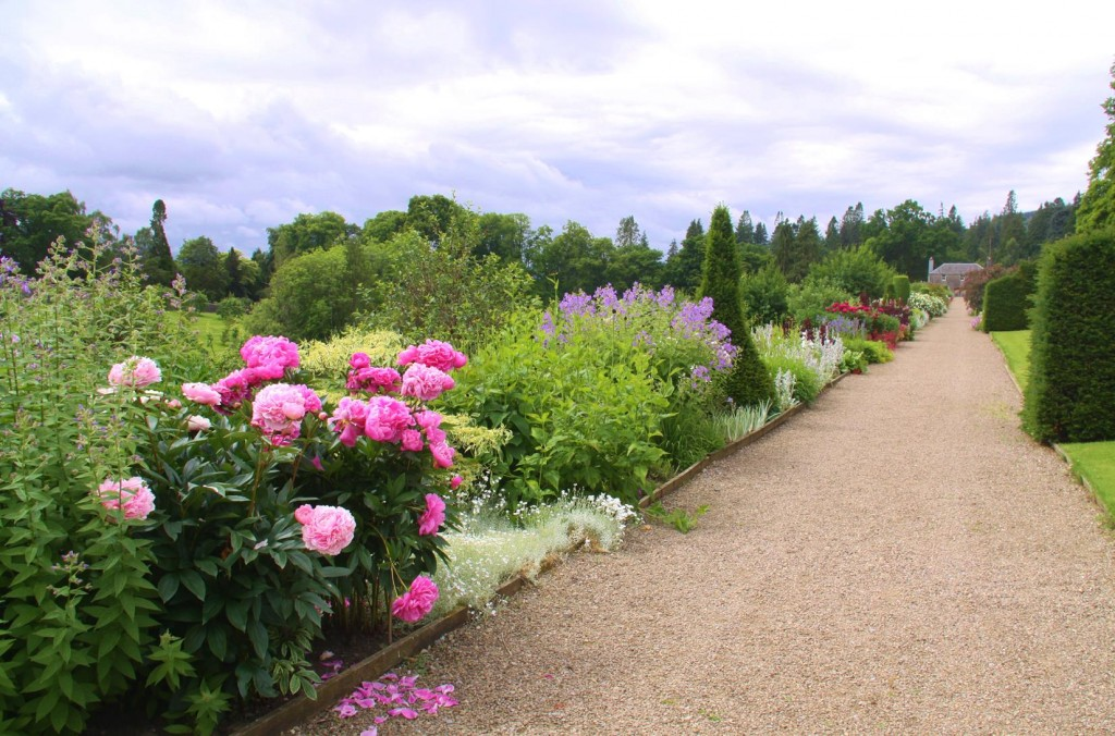 The Paths were lined with Colourful Flowers