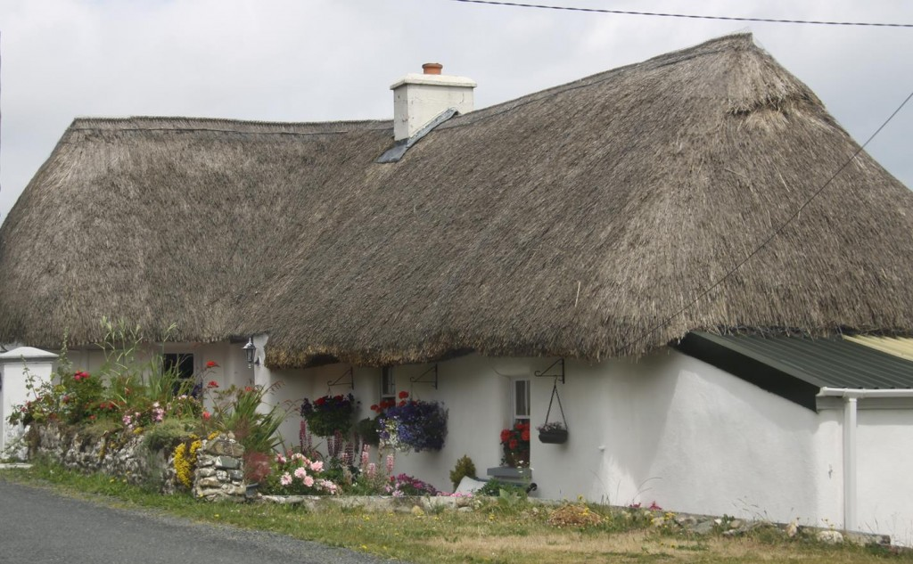 Thatched Houses are Numerous in the Area