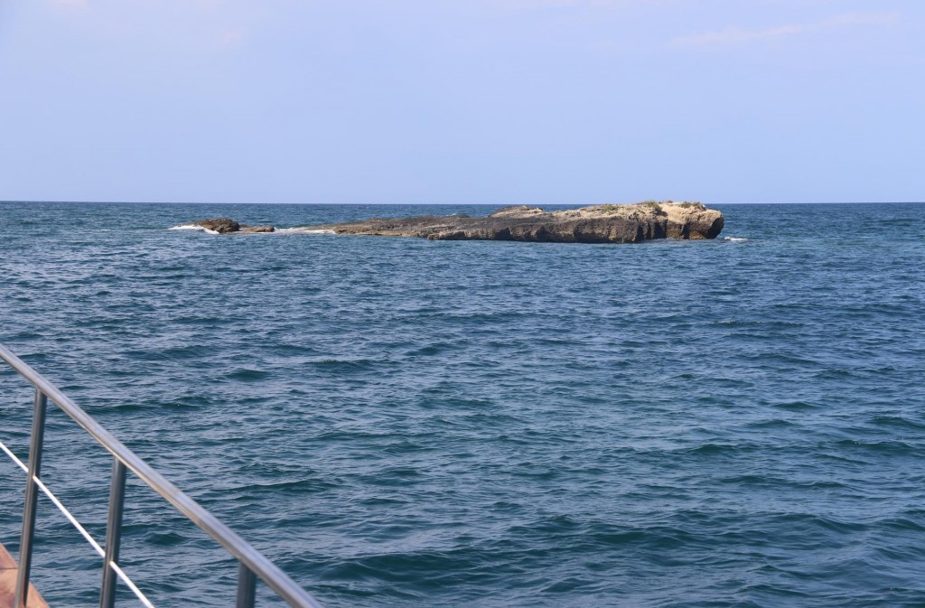Nearby is a large exposed rock which gives us a destination to swim to