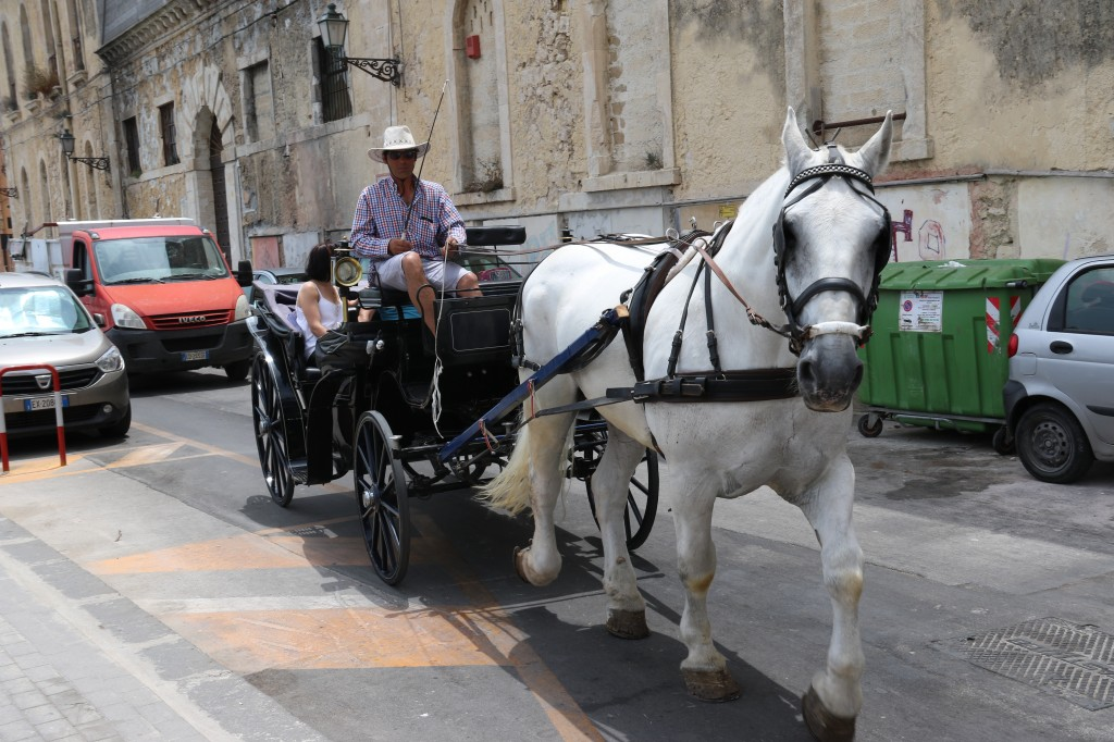 Horsedrawn carriages are popular with tourists