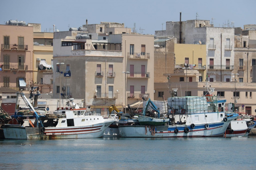 Fishing boats are plentiful in the port