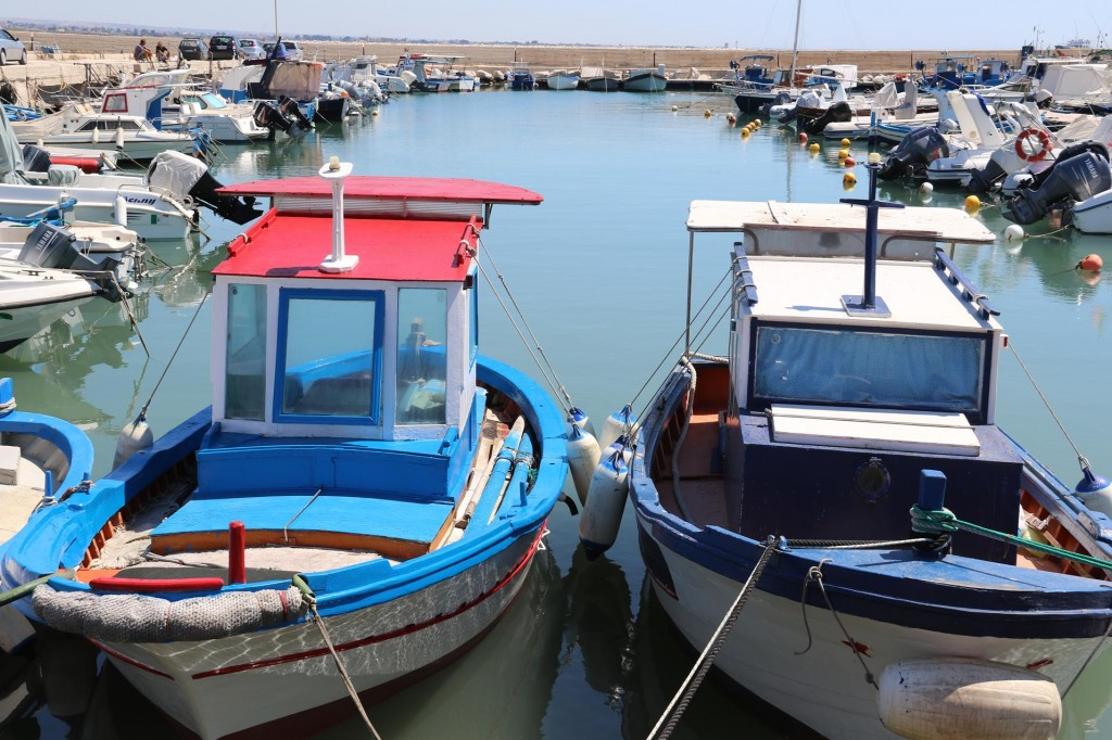 The port houses hundreds of small local fishing vessels