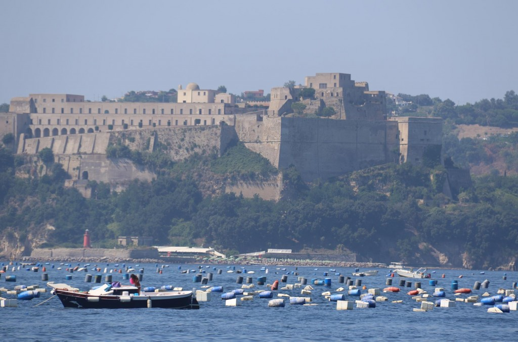 Extensive mussel farms are in all parts of the Gulf of Pozzuoli