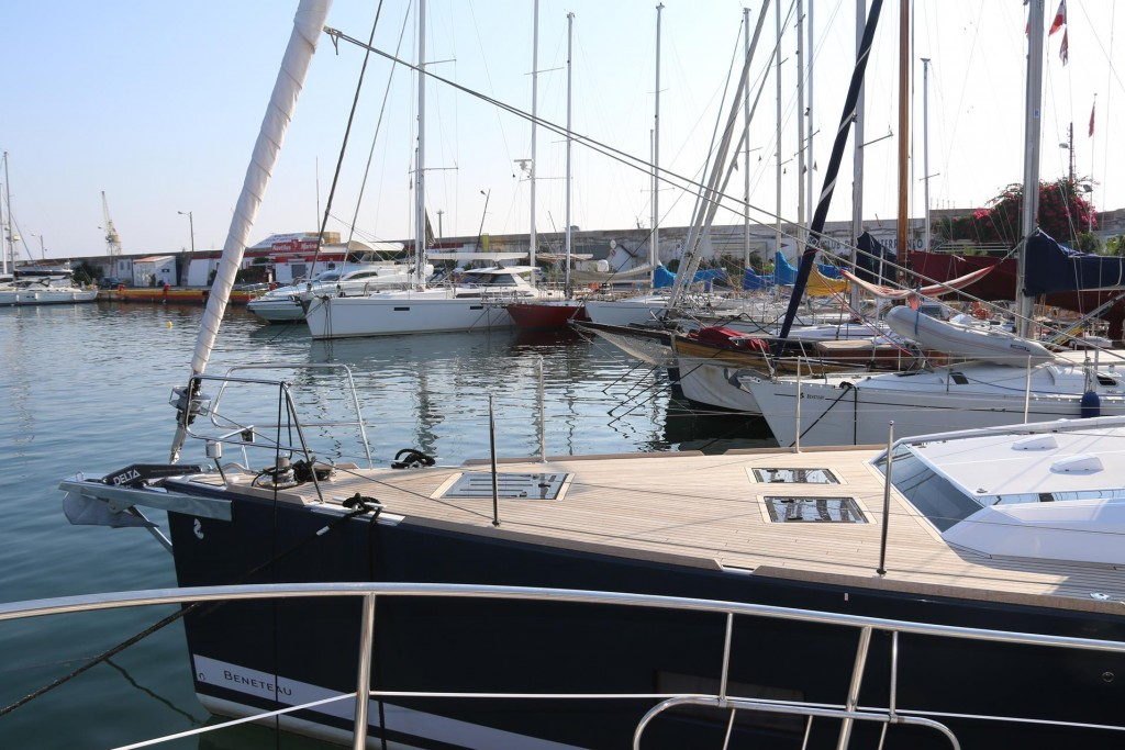 Our neighbours in the marina