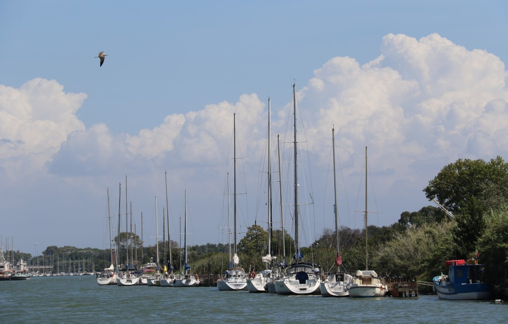 Yachts are tied up beside the island in the channel