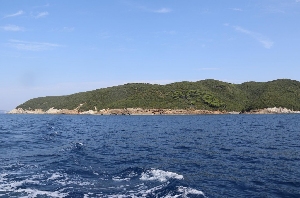 The island is also heavily wooded and very fertile
