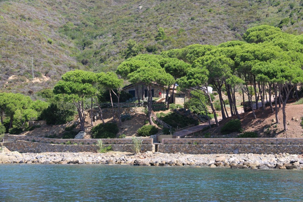 A very private home by the water almost obscured by trees