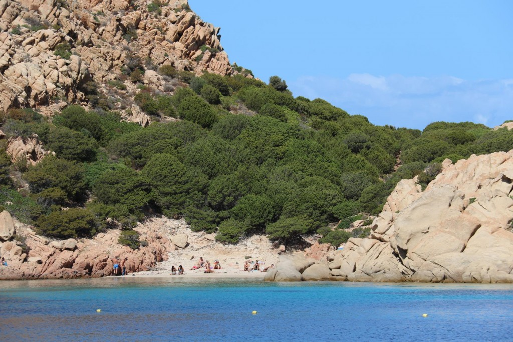 There are 2 small beaches at the head of the bay that can only be accessed by boat or by a 45 minute walk here by track
