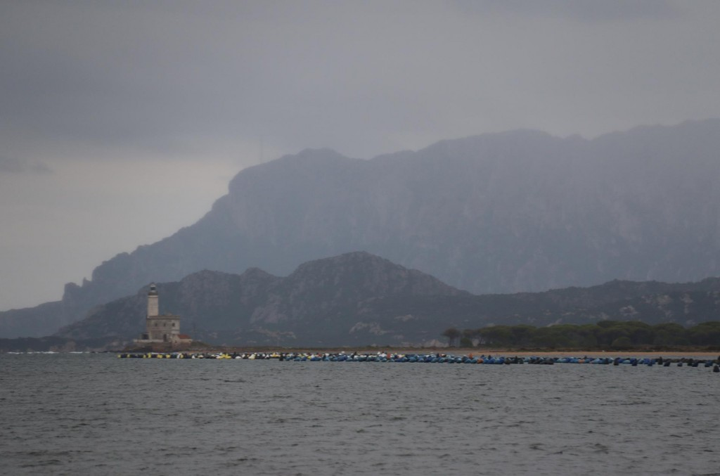 One of the first things we noticed as we approached the port of Olbia was all the mussel farms in the large gulf