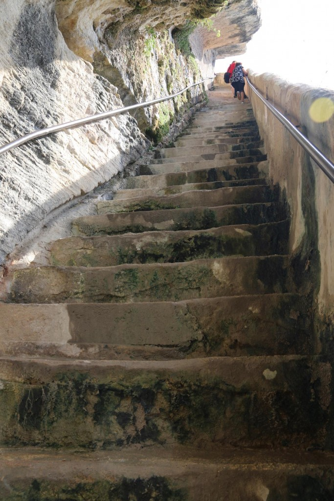 ....and 189 steps back to the top!!