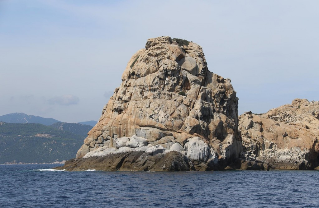 Diving is very popular here around Serpentara Island and it is also a favourite haunt for dolphins