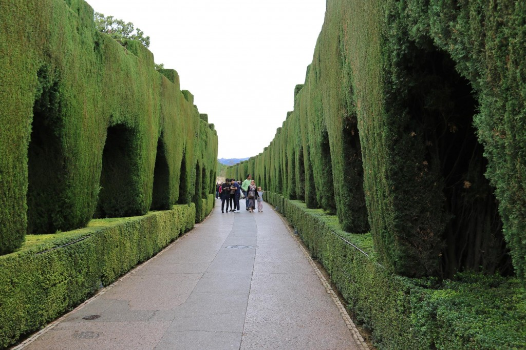 Through perfectly trimmed hedges we follow a path to the Generalife which is a retreat where the Granadan monarchs could go and relax in close proximity to the palaces of Alhambra