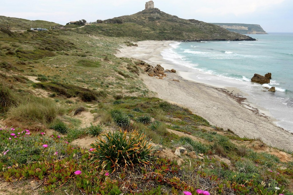 After we left Oristano we travelled the short distance west to the ancient archaeological site of Tharros