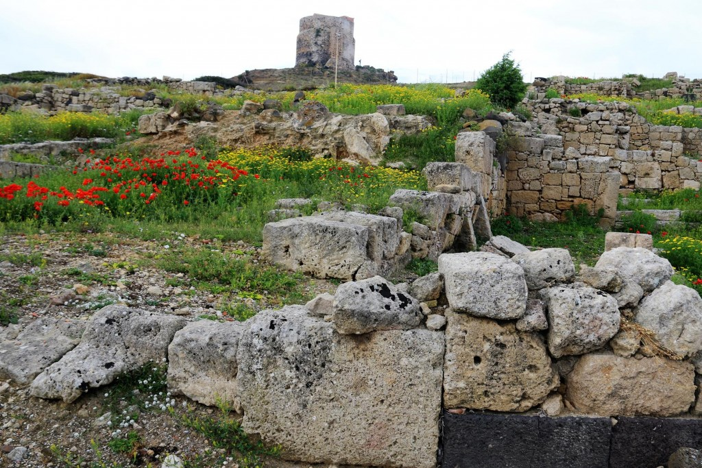 Today poppies and wildflowers nestle amoungst the ancient ruins