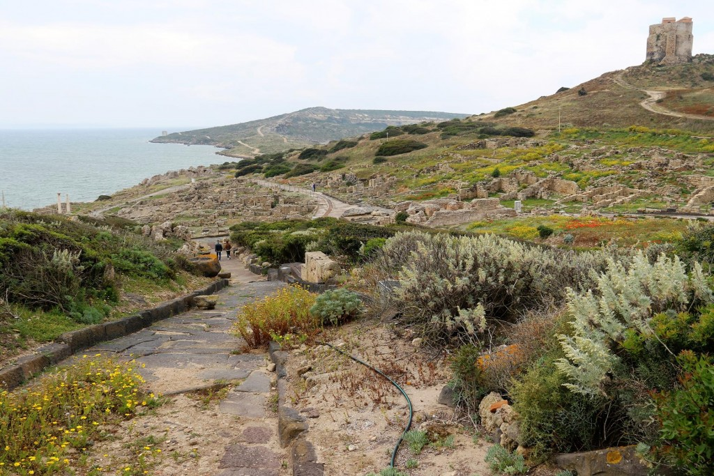 Tharros was a thriving settlement in ancient times, first established by the Phoenicians in 730BC