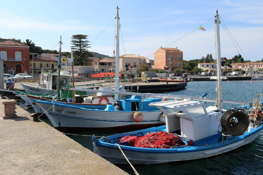 The fishing harbour beside Marina Sifredi has many fishing boats of all sizes
