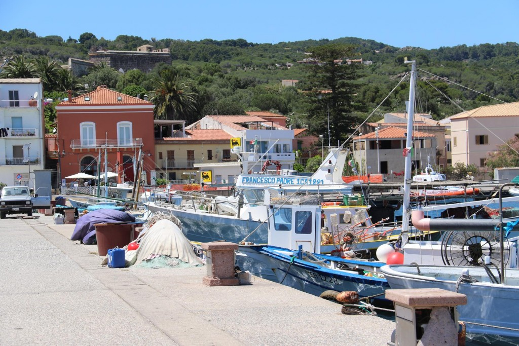 Nearby is the local fishing port