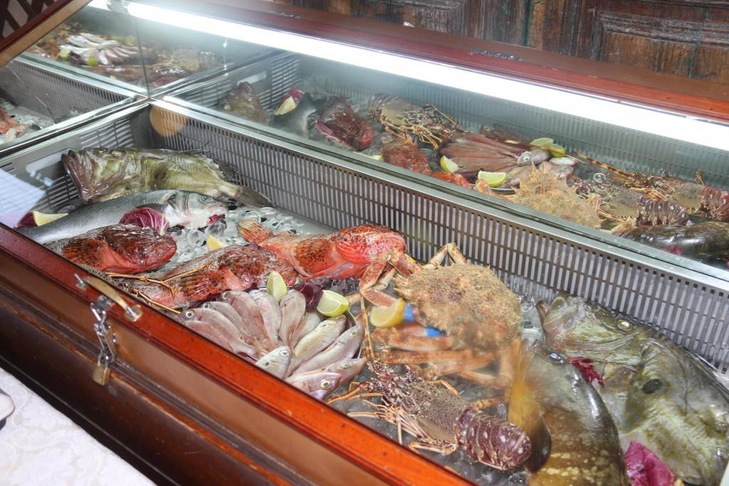 A wonderful display of fresh seafood