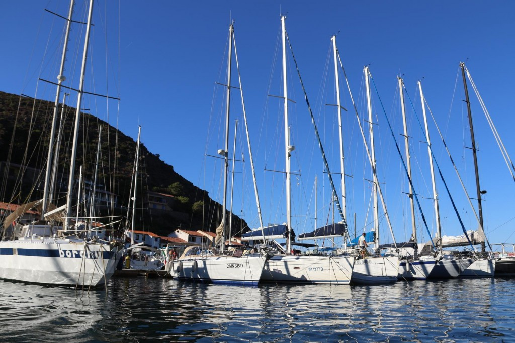 When we came back down to the port we noticed the boats were starting to fill up the port