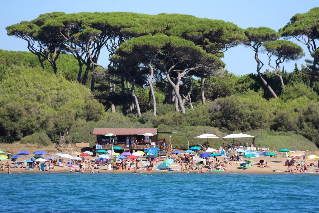 There are a lot of people on the beach enjoying the very warm conditions we have been experiencing the past weeks
