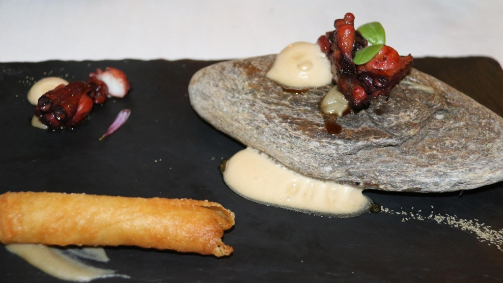 Octopus and Soya with vegetable spring roll