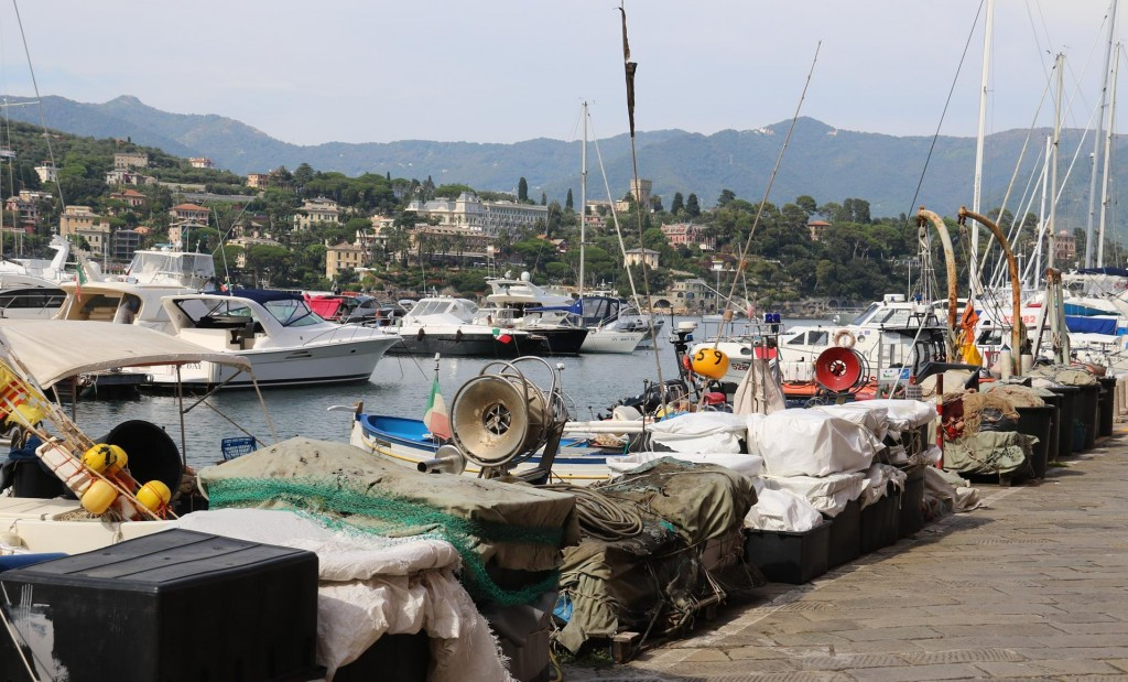 We take a walk down to the fishing port and marina