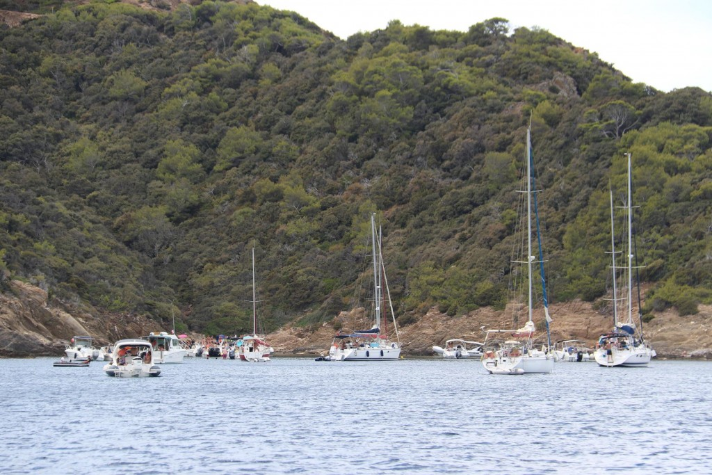 Numerous yachts are enjoying the islands today