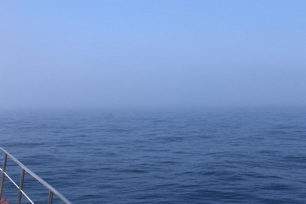 All of a sudden we find ourselves in a very deep sea mist which we had for several nautical miles